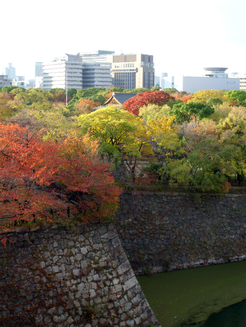 Autumn Leaves in Japan 2010